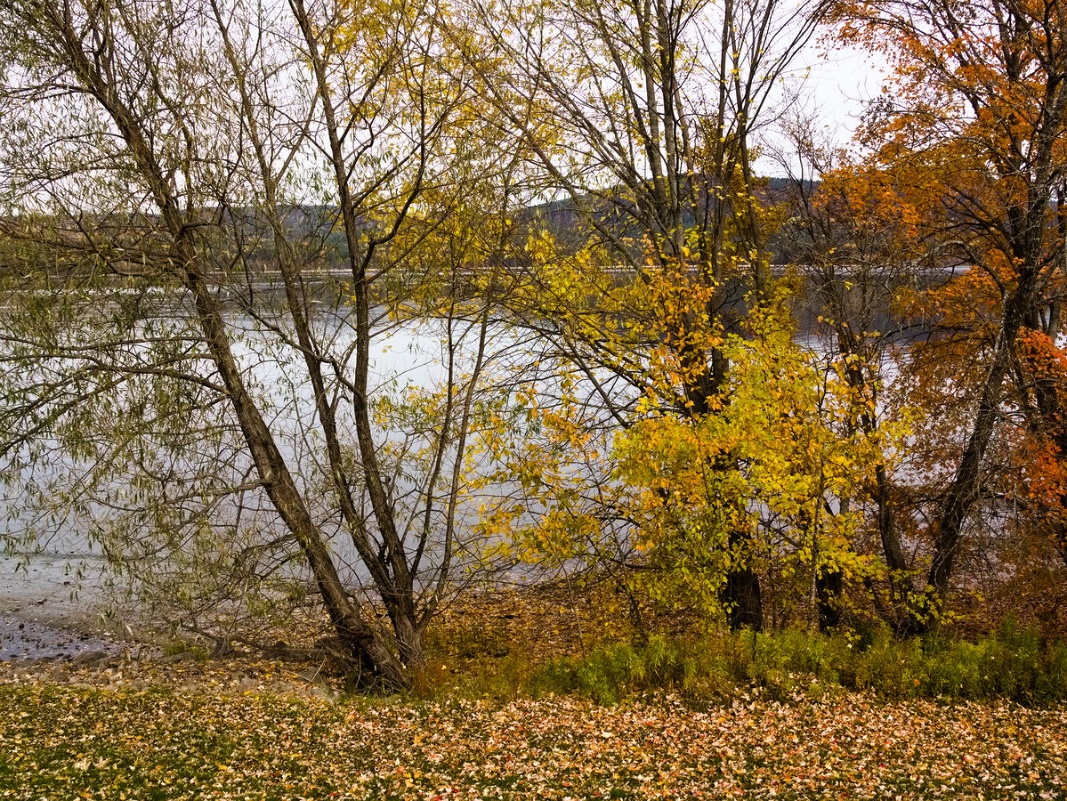 Fall colours  Deep River Waterfront